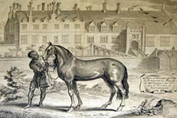 Equestrian groom at Welbeck Abbey, 1657.